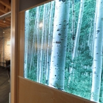 Backlit LED Decorative Display Wall - NxtWall Flex Series