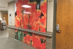 Healthcare Wall Installation - Fusion Custom - LuxCore