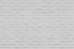 BRICK WALL PAINTED WHITE fusion wall panel