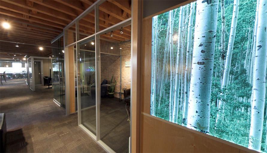 Backlit LED Decorative Display Wall - NxtWall Flex Series