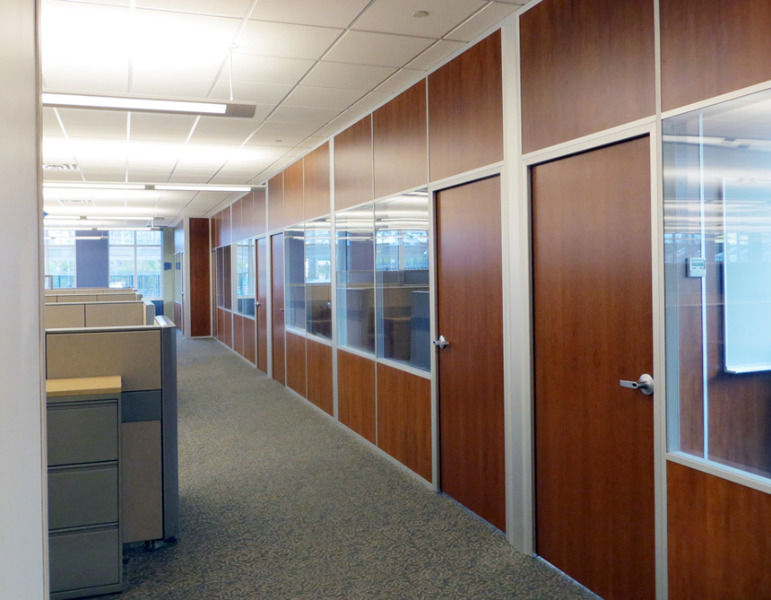 Solid Panel Interior Walls With Glass And Matching Doors