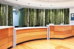 Fusion Custom - LuxCore - Forest Mural - Hospital Reception Installation