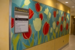 Fusion Custom - LuxCore - John Hopkins Hospital Nature Installation